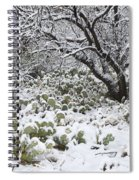 Prickly Pear Cactus And Mesquite Tree Spiral Notebook