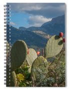 Prickly Pear Cactus And Mountains Spiral Notebook