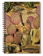 Prickly Pear Cactus Dsc08545 Spiral Notebook