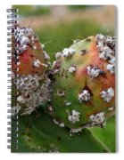 Prickly Pear With Cochineal Bugs Spiral Notebook
