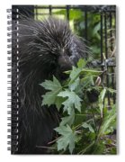 Prickly Pete Spiral Notebook