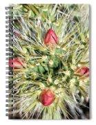 Prickly Pleasure Spiral Notebook