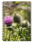 Prickly Youth Spiral Notebook