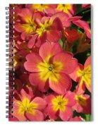 Primrose Flowers Spiral Notebook