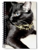 Princess Lucy Spiral Notebook