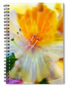 Prisms Of Nature - Meditation - Rhododendron  Spiral Notebook