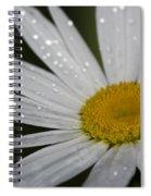 Pristine... Spiral Notebook