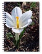 Pristine White Crocus Spiral Notebook