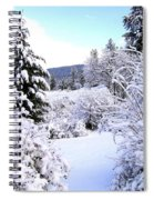 Pristine Winter Trail Spiral Notebook