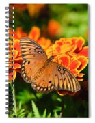 Proboscis Spiral Notebook