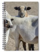 Professional Sheep Spiral Notebook