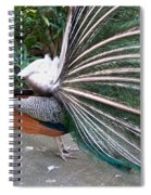 Profile Spiral Notebook