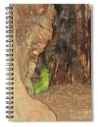 Profile Face In Tree Spiral Notebook