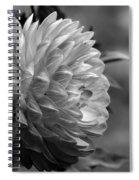 Profile Of A Pamela Howden Dahlia Spiral Notebook