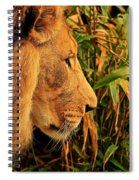 Profiles Of A King Spiral Notebook