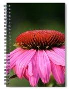 Profiling Echinacea Spiral Notebook
