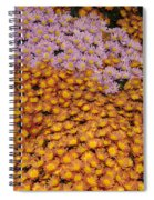 Profusion In Yellows Pinks And Oranges Spiral Notebook