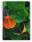 Prolonging Summer Spiral Notebook