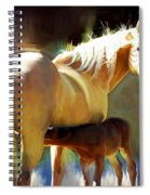 Promise Spiral Notebook