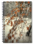 Prospect Park Winter Scene Spiral Notebook