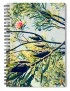 Protea Repens Maui Hawaii Sugarbush Spiral Notebook