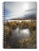 Protected Wetlands Spiral Notebook