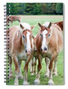 Protective Spiral Notebook