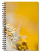 Protruding Spiral Notebook