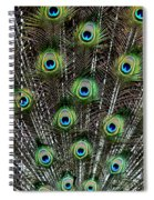 Proud Display Spiral Notebook