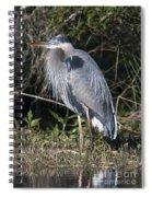 Pround Blue Heron Spiral Notebook