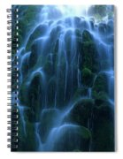 Proxy Falls Detail 2 Spiral Notebook