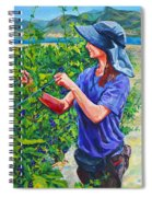 Pruning The Pinot Spiral Notebook