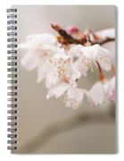 Prunus Hirtipes Spiral Notebook