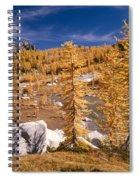 Prusik Peak Above Larch Grove Spiral Notebook