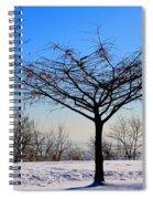 Psalm 91 V 1 Spiral Notebook