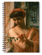 Psyche In The Temple Of Love Spiral Notebook