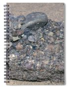 Puddingstone Conglomerate Spiral Notebook