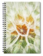 Puff Ball Glacier National Park Spiral Notebook