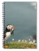 Puffin With Sandeels Spiral Notebook