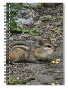 Puffy Checks Spiral Notebook