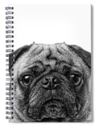 Pug Dog Square Format Spiral Notebook