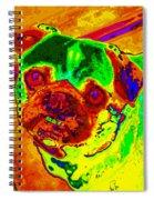 Pug Portrait Pop Art Spiral Notebook