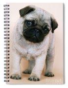 Pug Puppy Dog Spiral Notebook