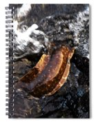 Puhi'ula The Giant Red Eel  Spiral Notebook