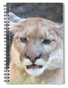 Puma Head Shot Spiral Notebook