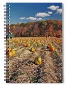 Pumpkin Field Spiral Notebook