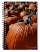 Pumpkin Harvest 1 Spiral Notebook
