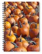 Pumpkin Harvest Spiral Notebook