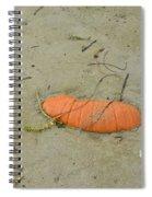 Pumpkin In The Sand Spiral Notebook