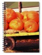Pumpkin Load Spiral Notebook